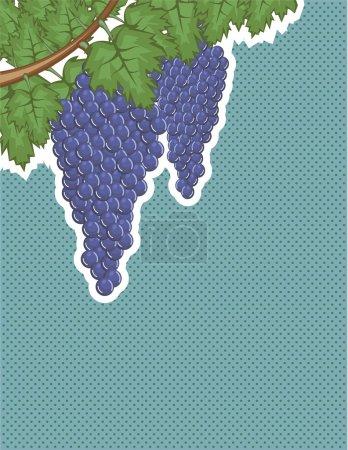 Grapes on a vine Vector Background pop art