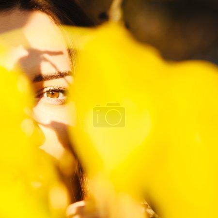 Photo pour Portrait artistique de mode de jeune brune. Il a traversé les feuilles. Profondeur de champ faible - image libre de droit