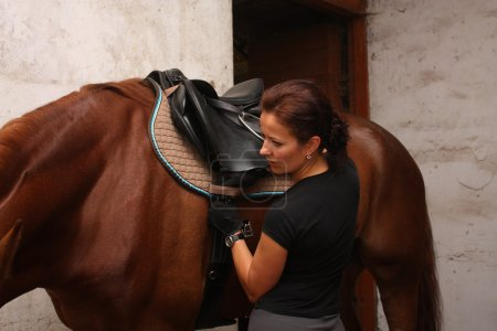Brunette woman saddling up brown horse