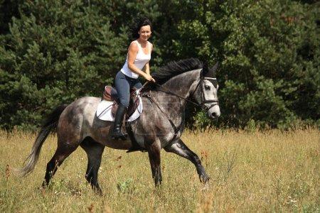 Photo pour Belle femme cheval gris près de la forêt - image libre de droit