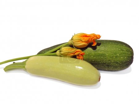 Vegetable marrow and zucchini with flowers on a white background, macro.
