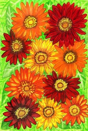 Photo pour Fond de fleurs de gerbera de couleurs rouge, orange et jaune sur feuilles vertes, tableau peint à la main, aquarelles. Taille de l'original 29,5 x 20,5 cm . - image libre de droit
