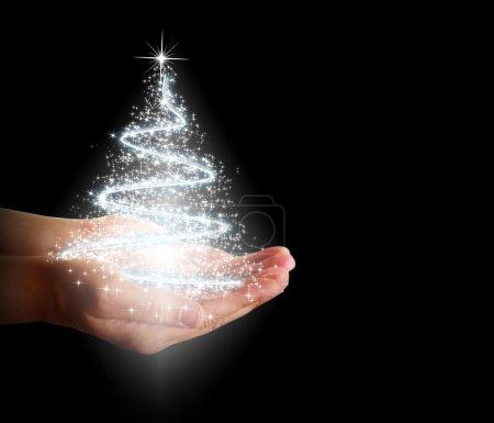 Photo pour Arbre de Noël des étoiles et des lumières dans leurs mains sur fond noir - image libre de droit