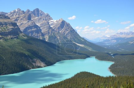 Photo pour Lac Peyto (Alberta) . - image libre de droit