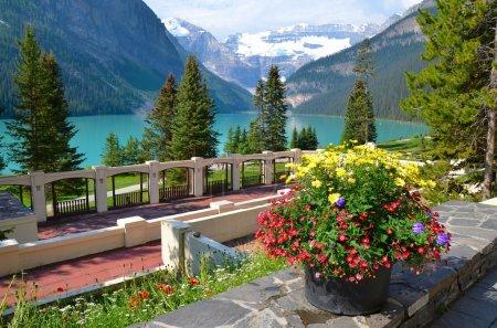 Photo pour Lake Louise en Alberta, Canada - image libre de droit