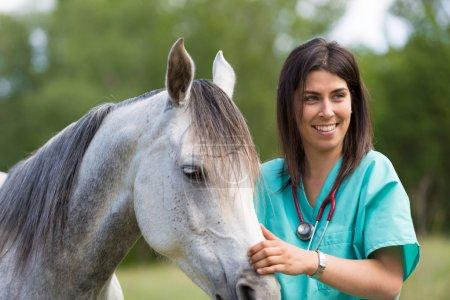 Tierarzt auf einem Bauernhof