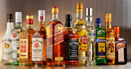 Photo pour Poznan, Pologne - 27 juillet 2016: partout dans le monde quelque 2 milliards de personnes utilisent d'alcool, une des drogues récréatives plus largement utilisés sur terre, avec une consommation annuelle de plus de 6 litres d'alcool pur par personne - image libre de droit