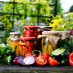 Jars of pickled vegetables in the garden. Marinate...