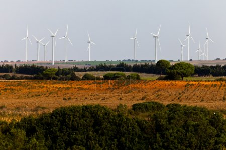 Aerogenerator Windmills in field