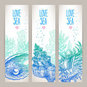 Three beautiful banners with a variety of shells and seaweeds