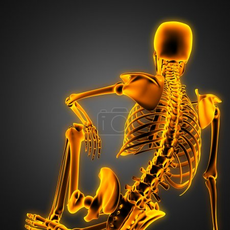 human radiography scan  with glowing bones
