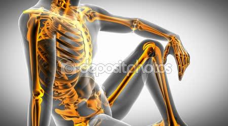 RTG kontroly lidské kosti. zdravotní záznam