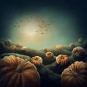Dark landscape with pumpkins