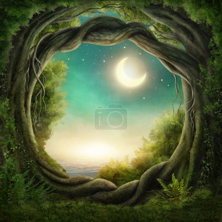 Photo pour Enchanted dark forest in the moonlight - image libre de droit