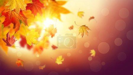Foto de Las hojas de otoño cayendo sobre fondo colorido - Imagen libre de derechos