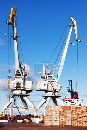 Photo for Cranes and ship in the port of machinery and forklifts to load and unload pallets on a sunny summer day - Royalty Free Image