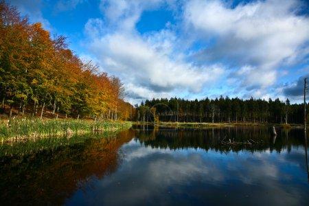 Lake in Denmark