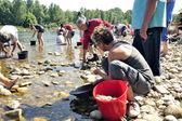 Hledači zlata ze všech věkových kategorií na břehu řeky gardon