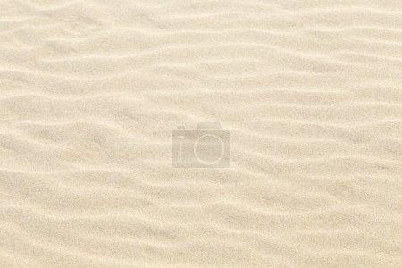 Photo pour Motif harmonique de plage de sable fin à Usedom - image libre de droit