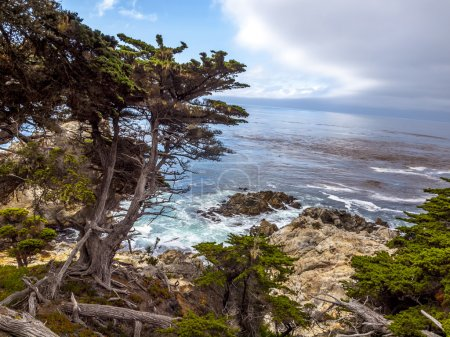 View of rocky cliffs above the Pacific Ocean at Point Lobos Stat