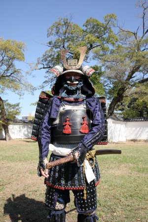KAGAWA, JAPAN - OCTOBER 25: Katana sword fighters at Marugame Iai Festival, event dedicated to Japanese culture and tradition at Marugame-castle on October 25, 2015 in Japan.