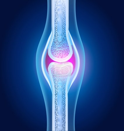 Normal joint anatomy abstract blue design