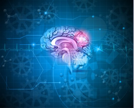 Illustration for Human brain abstract light blue background with cardiogram, gears and molecules - Royalty Free Image