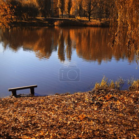 Photo for Old bench by the lake in the fall - Royalty Free Image