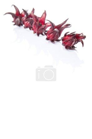 Roselle fruit over white background