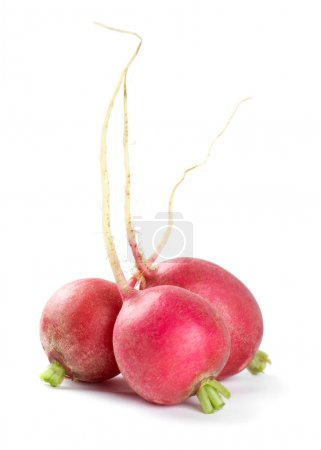 Photo for Fresh red radishes on white background - Royalty Free Image
