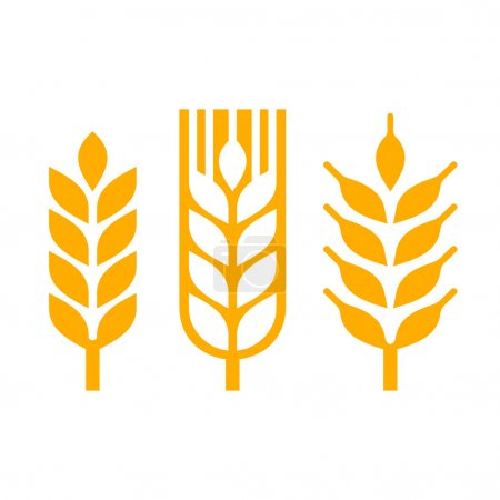Illustration for Wheat Ear Spica Icon Set. Vector illustration - Royalty Free Image