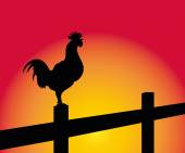 crowing rooster on a fence