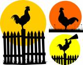 crowing rooster and rising sun