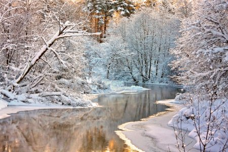 Photo for Winter landscape with the river - Royalty Free Image