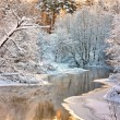 Winter landscape with the river...