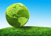 Zelený koncept