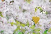 Dřevěné srdce na jaře