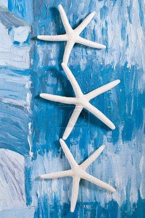 white starfish on blue