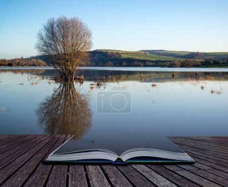 Photo for Book concept Beautiful landscape of flood plains in Winterwith mirror reflections - Royalty Free Image