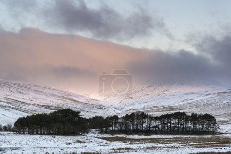 Foto de Impresionante amanecer rosa sobre la montaña Paisaje de invierno - Imagen libre de derechos
