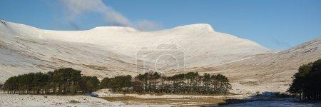 Foto de Impresionante paisaje panorámico de invierno cubierto de nieve con hermoso cielo y nubes - Imagen libre de derechos