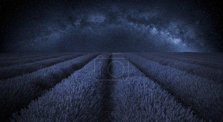 Photo pour Belle image de champ de lavande avec la voie lactée dans le ciel de lcear - image libre de droit