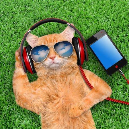 Photo pour Écouteurs de chat portant des lunettes de soleil relaxant dans l'herbe . - image libre de droit
