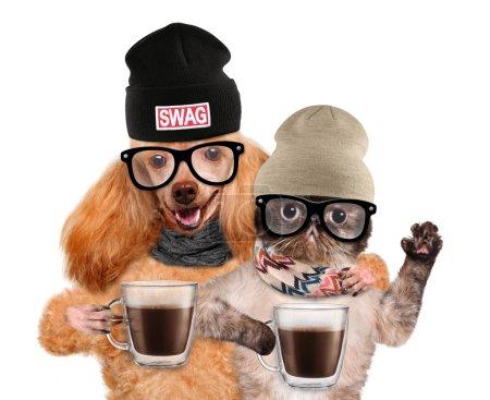 Photo pour Chien avec chat, tenant dans les pattes d'une tasse de cacao. Isolé sur blanc . - image libre de droit