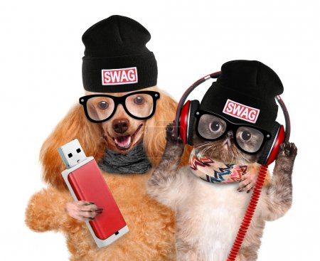 Cat and dog headphones.