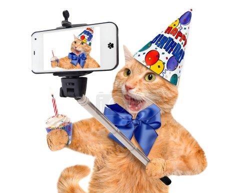 Photo pour Chat anniversaire en tenant une selfie avec un smartphone. - image libre de droit