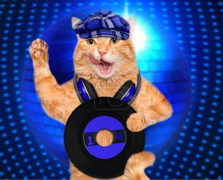 Music headphone vinyl record cat.
