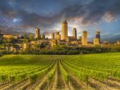 Collines couvertes de vignes de la Toscane, Italie