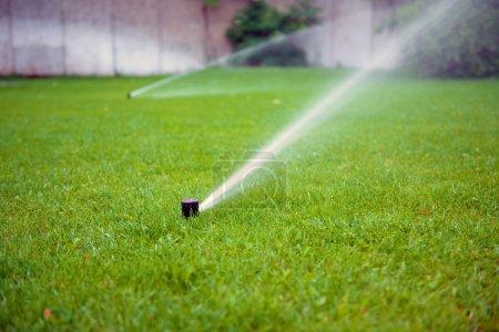 Grass Sprinkler closeup photo