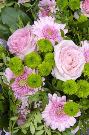 Photo pour Fleurs - Roses roses et Gerberas - Saint Valentin - Fête des Mères - Célébrations - image libre de droit